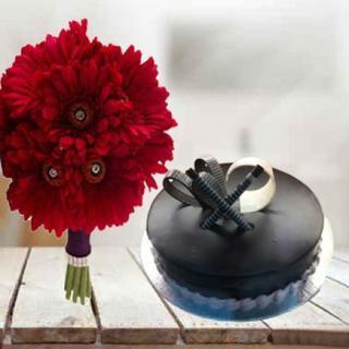 Chocolate Truffle Cake & Gerbera
