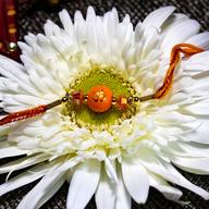Om Orange Rakhi
