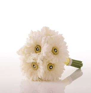 White Gerbera Bouquet