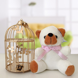 Love Cage- Teddy with Cage