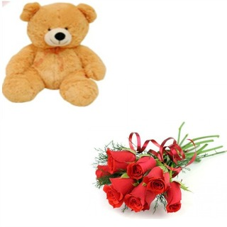 Teddy with 6 Roses