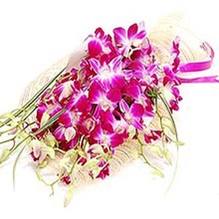 Lovely Orchids & Glads