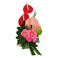 Anthurium & Gerbera Bouquet