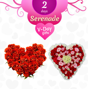 Valentine 2 Day Heart Serenade