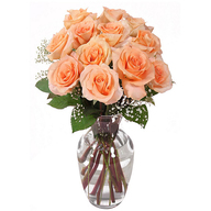 Peach Roses Vase