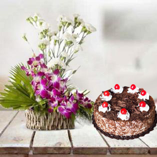Orchid & Carnation with 5 Star Cake