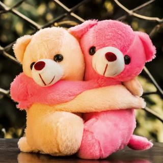 Hugging Teddy Pair