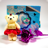 Teddy, Purple Rose and Diary Combo