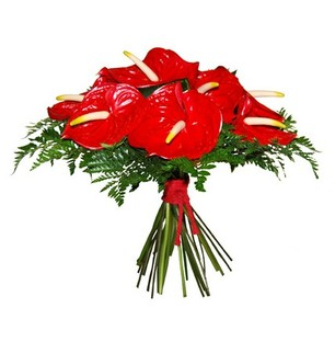 Anthurium Bouquet
