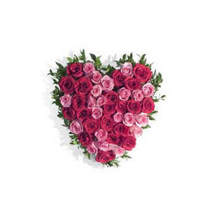 Red & Pink Roses Heart