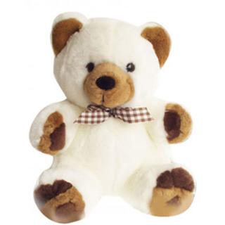Valentine Teddy Bear 12 Inch