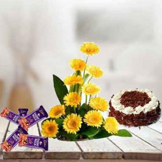 Gerbera, Cake & Chocolates