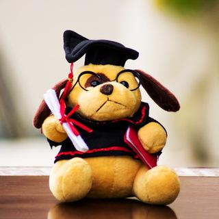Scholar Teddy