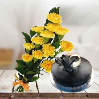 Choco Truffle Cake & Carnations