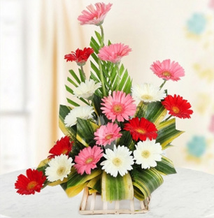 Mix Gerbera Arrangement