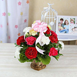 Mixed Carnations Basket