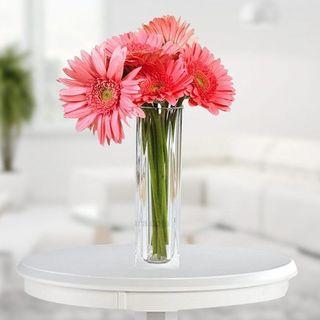 Valentine Pink Gerbera Vase