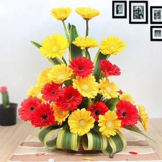 Twin Color Gerbera Arrangement