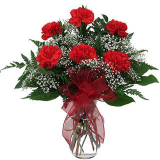 Valentine Red Carnation Vase