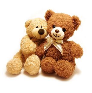 Teddy Bear Pair 12 Inch