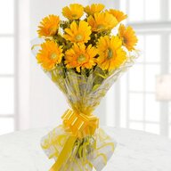 Valentine Yellow Gerbera Bouquet