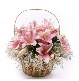 Lilies in a  Basket