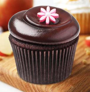 Chocolate Swirl Cupcakes