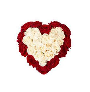 Red & White Roses Heart