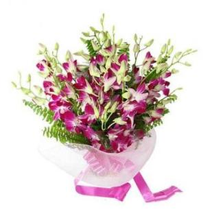 Purple Orchid Bunch