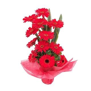 Valentine Red Gerbera Basket