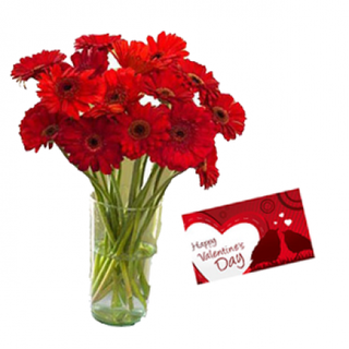 Valentine Red Gerberas Vase and Card