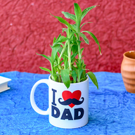 Special 2 Layer Lucky Bamboo in I Love Dad Mug