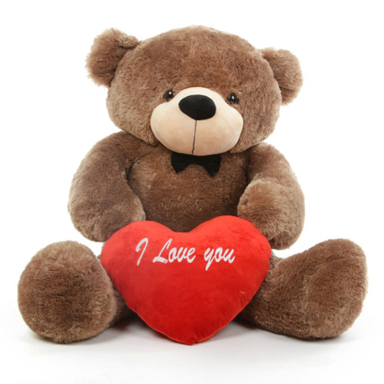 Valentine Teddy Bear with Heart