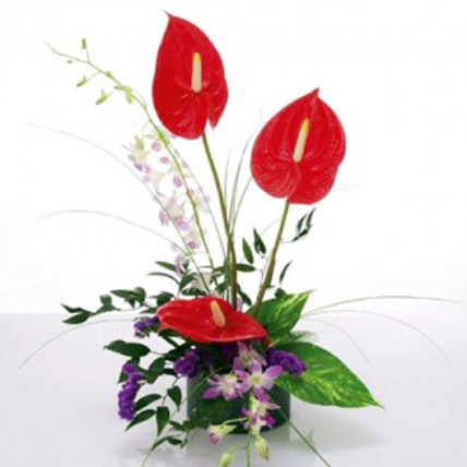 Anthurium & Orchids Vase