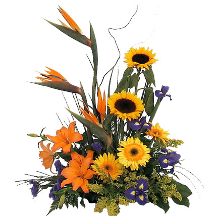 BOP & Gerbera Arrangement