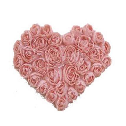 Peach Roses Heart