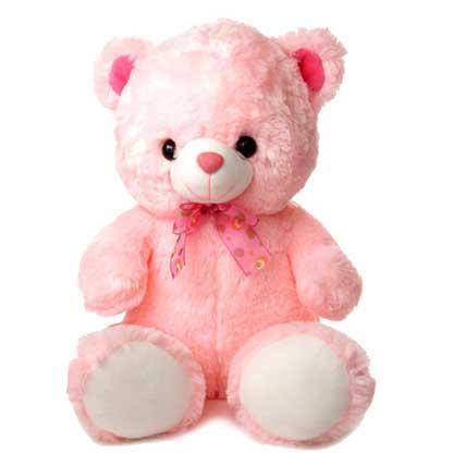 Valentine Pink Teddy