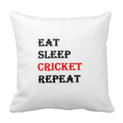Game of Cricket Cushion
