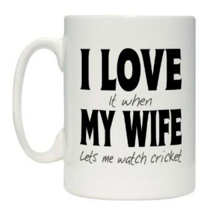 Cricket Lover Mug