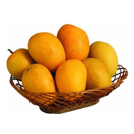 Mango (Alphonso)