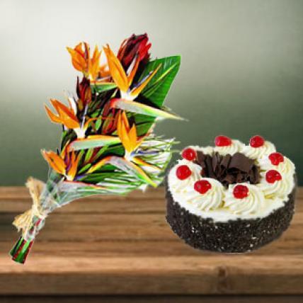 Bird of Paradise & Cake