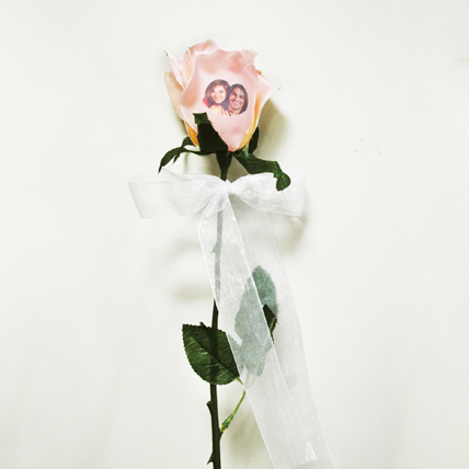 Peach Rose with Photo