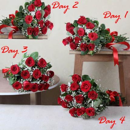 Romantic Red 4 Day Serenade