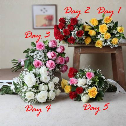 5 Days of Ravishing Roses