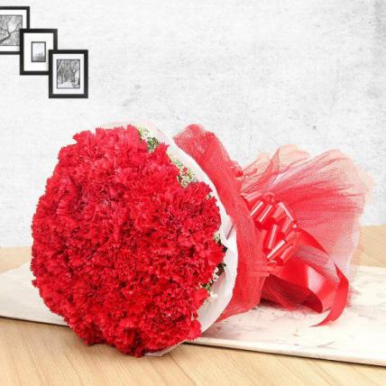 Red Carnation Large Bouquet