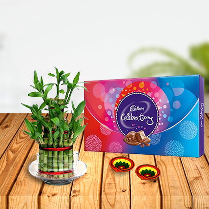 Lucky Bamboo with Cadbury Celebration & Diyas