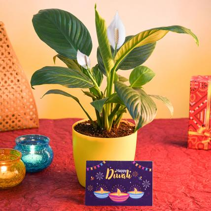 Happy Diwali with Peace lily and Greeting Card