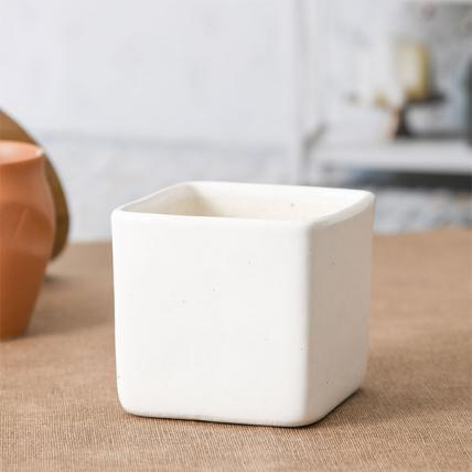 Square Box Ceramic Pot (White)