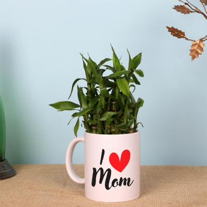 2 Layer Lucky Bamboo in I Love Mom Mug