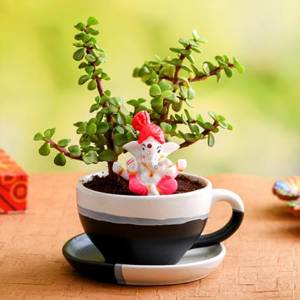 Jade plant in Ceramic pot and Lord Ganesha Idol
